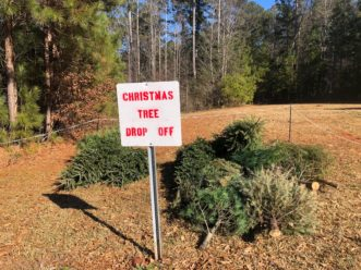 Christmas Tree drop-off location in Pickens County. Susan Lunt, ©2021, Clemson University