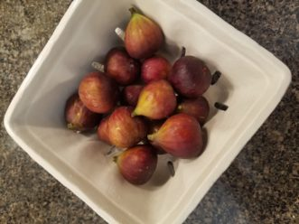 After picking, wash fresh figs for immediate enjoyment or store for later use.