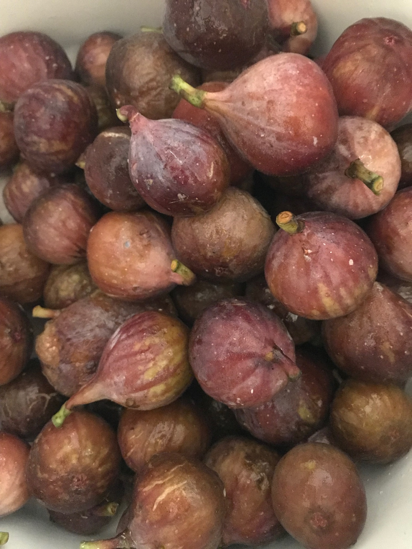 Ripe and freshly harvested figs.