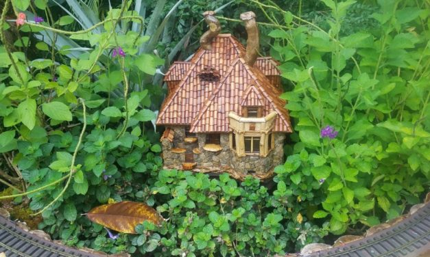 How to Build Your Own Miniature Garden