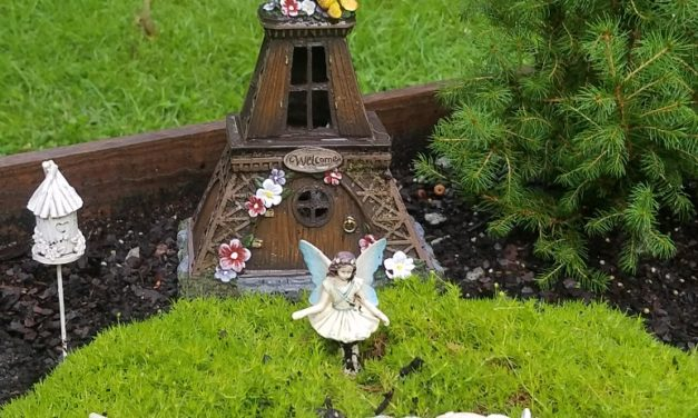 Miniature Gardens: A Story to Tell