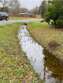 """A ditch is part of a conveyance system that helps to move water away during storm events"" K. Morganello, ©2020, Clemson Extension"